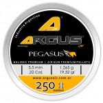 Argus Pegasus 19 52